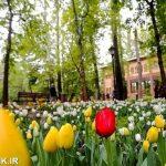 بوستان علی محمد مختاری -بوستان باغ ایرانی - آتلانتیک