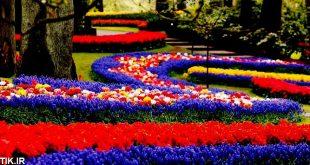 پارک و باغ گل کرج
