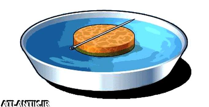 چگونه یک قطب نمای ساده بسازیم؟ - سایت آموزشی آتلانتیک