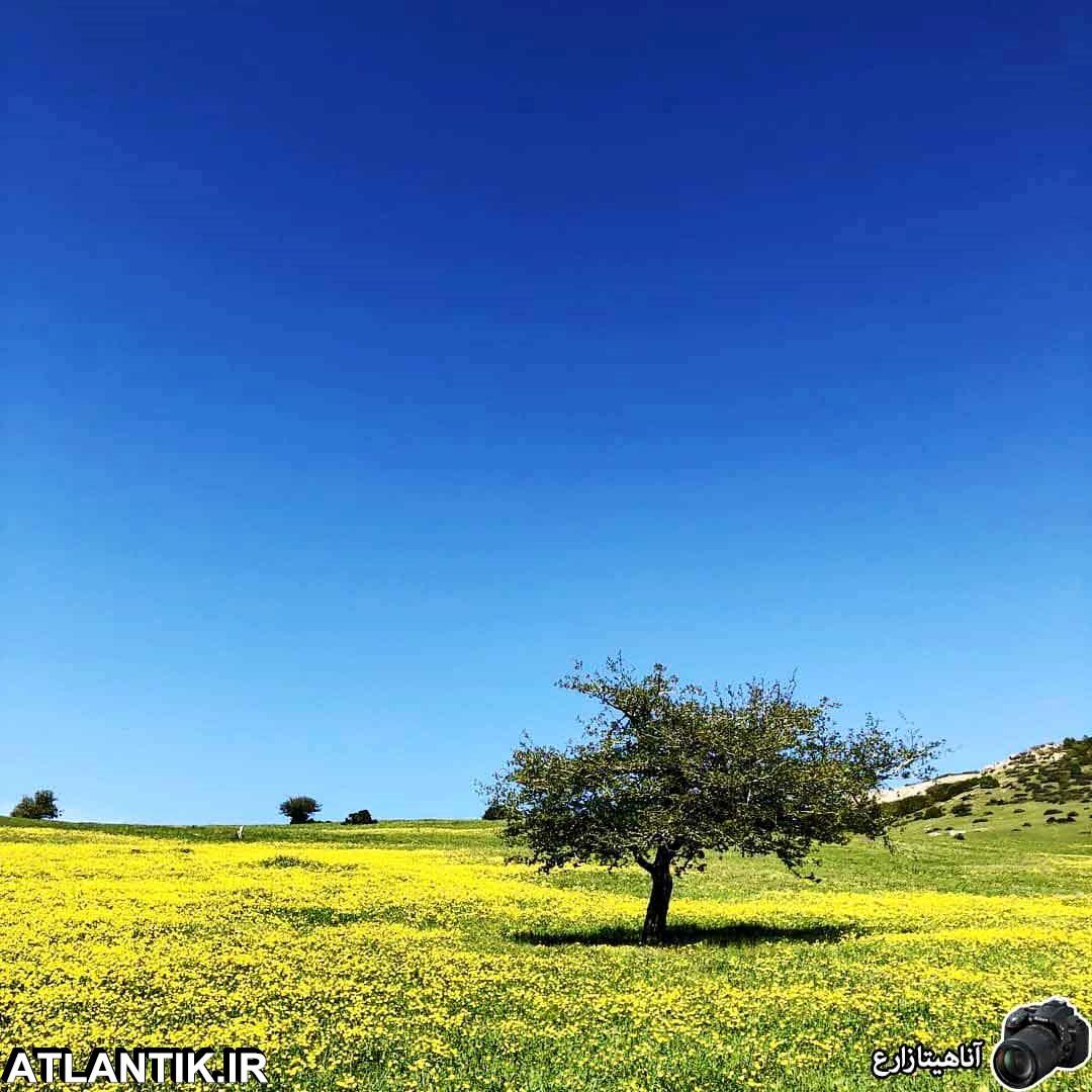 گردشگري آتلانتيک-در طبیعت سرسبز گیلان روستایی بسیار زیبا و ییلاقی به نام داماش قرار گرفته است، داماش یکی از روستاهای شهر جیرنده، از توابع بخش عمارلو، شهرستان رودبار است که در 48 کیلومتری جنوب شرقی رودبار و در 130 کیلومتری رشت و در ارتفاع حدود 1750 متری از سطح دریا قرار گرفته است.